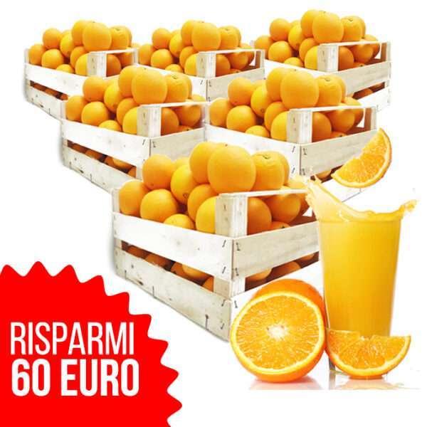 Arancia Tardiva 6 casse